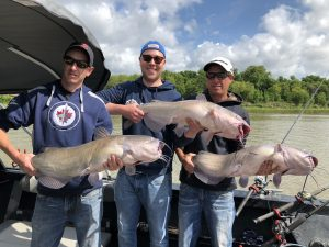 3 anglers with 3 huge catfishes